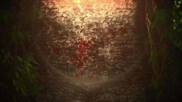 fundo de terror místico com sangue escuro e câmera de movimento. feriado do dia das bruxas, pano de fundo abstrato