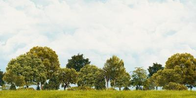 Green meadow and cloudy skies, panoramic view, 3D illustration