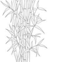 Hand drawn bamboo illustration isolated on white background.