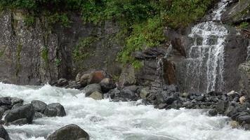 Betrachten Sie Flussszenen im Wald, im Nationalpark Dombay, im Kaukasus, in Russland