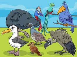 birds animal characters group cartoon illustration vector