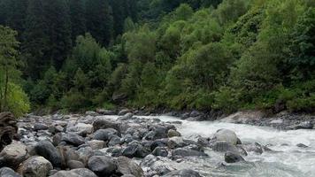 Betrachten Sie Flussszenen im Wald, im Nationalpark Dombai, im Kaukasus, in Russland