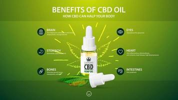 Green template with white bottle of Medical cbd oil, green template with inphographic of health benefits of CBD from cannabis, hemp, marijuana vector