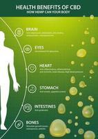 cartel vertical verde con inphographic de los beneficios del cbd para su cuerpo y la silueta del cuerpo humano. beneficios para la salud del cannabidiol cbd del cannabis, cáñamo, marihuana, efecto en el cuerpo vector
