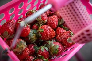Strawberries in a pink basket photo