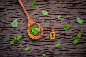 Mint essential oil bottle photo