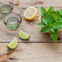 Fresh mojito drink ingredients photo