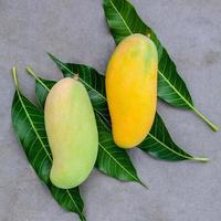 Fresh organic mangoes