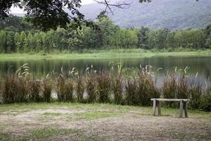 Relaxing bench near a lake