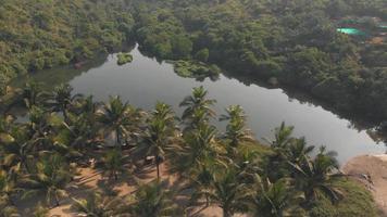 oásis de lago de água doce arambol perto da praia de arambol em goa, Índia - imagem aérea revelada em forma de mosca video