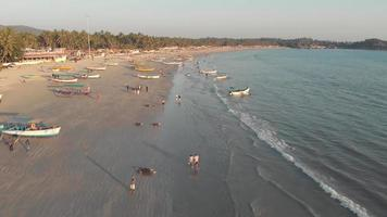 Tourists strolling along the golden sand near the coastline with moored fishing boats, Palolem Beach video