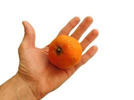 Mandarina en una mano abierta aislado sobre un fondo blanco. foto