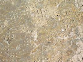 Muro de hormigón o cemento para fondo o textura. foto