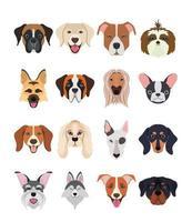 bundle of dog breeds group vector