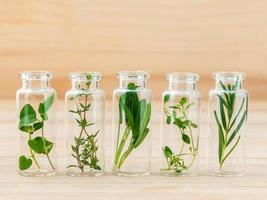 Glass viles of fresh herbs photo