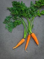zanahorias frescas sobre un fondo de hormigón oscuro foto