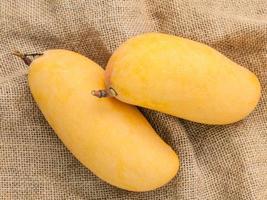 Two fresh mangoes