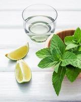 Fresh ingredients for mojitos