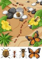 Top view of different types of insect in the garden scene vector