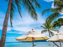 White umbrellas with coconut palm tree photo