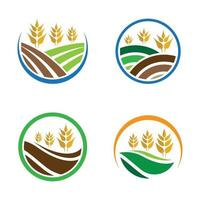 Wheat logo images vector