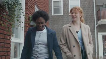 zwarte rijpe vrouw en jonge blanke vrouw lopen samen, buiten, lachen, blanke vrouw praat en gebaren, zwarte vrouw luistert video