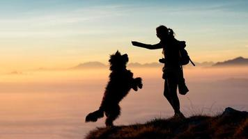Girl gives food to her dog in the mountains photo