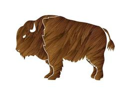 Bison Big Buffalo vector