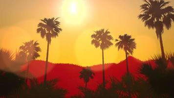 vista panorâmica da paisagem tropical com palmeiras e pôr do sol, fundo de verão video