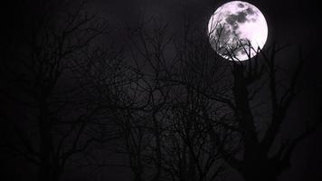 animação mística fundo de halloween com lua escura e nuvens, pano de fundo abstrato