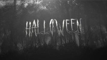 texto de animação halloween e fundo místico com floresta escura e neblina