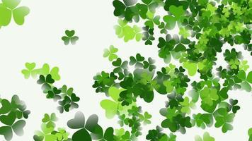 rörelse gröna shamrocks, saint patrick day animation bakgrund video