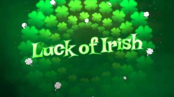animation närbild lycka till irländsk text och rörelse små gröna shamrocks på saint patrick day blank bakgrund