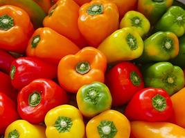 Colorful bell peppers on the market photo