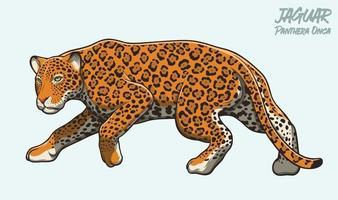 jaguar acechando ilustración vector