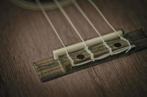 Ukulele string close-up