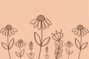 Floral Line Art Background Vector