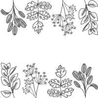 Leaf Outline Background vector