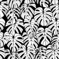 Monstera Leaf Seamless Pattern vector