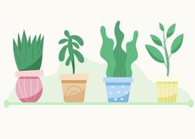 Set of indoor plants succulents vector