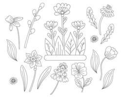 Conjunto de flores de primavera: manzanilla, narciso, tulipán, diente de león, violeta y sauce. dibujo vectorial. línea negra, contorno. Primeras plantas ornamentales para impresión, decoración, diseño, decoración y postales. vector