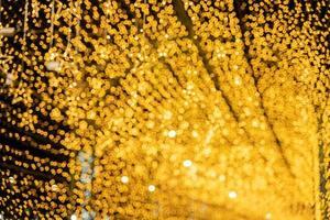 Gold Christmas lights photo
