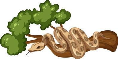 Serpiente en una rama aislada sobre fondo blanco. vector