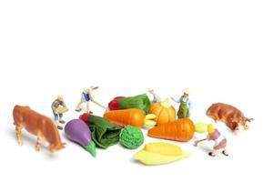 Jardineros en miniatura cosechando verduras sobre un fondo blanco, concepto de agricultura
