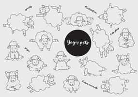 mascotas de yoga. hermosas ovejas se levantan en una asana y practican deportes, gimnasia y meditación. yoga de las ovejas - conjunto de imágenes lineales. ilustración vectorial. aislado. contorno, línea, contorno vector