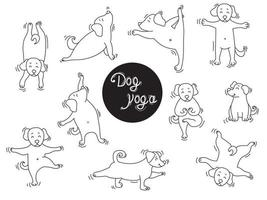 Yoga pets. Dog yoga a large set of pictures. puppies stand in an asana and go in for sports, do exercises, Home hobby. Outline. Vector illustration