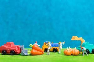 Agricultores en miniatura cosechando verduras, concepto de agricultura
