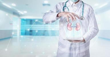 Kidney healthcare concept photo