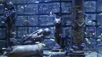 Estatua egipcia y peces bajo el agua.