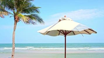 paraguas palmera alrededor de la playa video